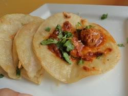 may -   shrimp taco
