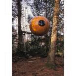 pumpkin-2_1455976it.jpg