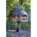 treehouse-2_1455973it.jpg