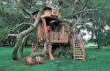 treehouse-3_1455972it.jpg