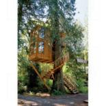 treehouse-5_1455970it.jpg