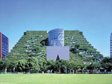 green-rooft.jpg