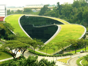 singapore-green-rooft.jpg