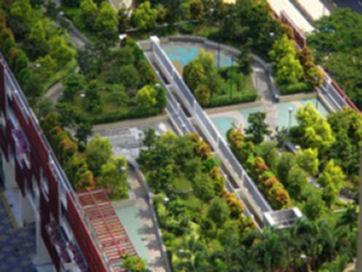 Rooftop-Gardens-300x225t.jpg