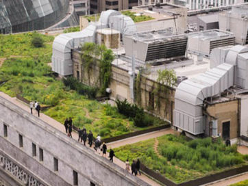 green-roof-theudalllegacybustour_viewsfromtheroadt.jpg