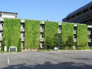 10-aichi-prefecture-green-curtainst.jpg
