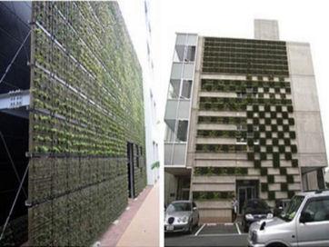 12-parabienta-shimizu-green-living-wallt.jpg