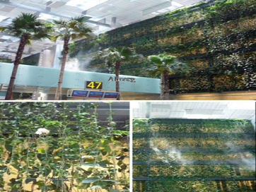 21-green-living-wall-changi-airport-singaporet.jpg