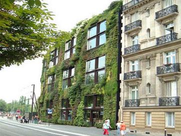 green-wall-1t.jpg