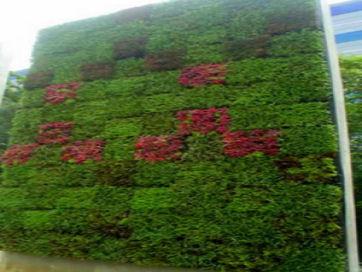green-wall_2.jpg