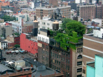 rooftop-garden-new-york-greenrooftt.jpg