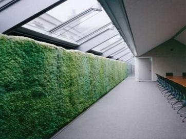 interior-green-wallt.jpg
