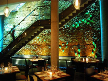 17-moss-room-restaurant-san-francisco-living-green-wallt.jpg