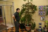 monkey_puzzle_tree_1t.jpg