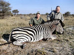 godaddy zebra - Bob Parsons kills a zebra No unicorns?