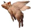 pigsfly.png