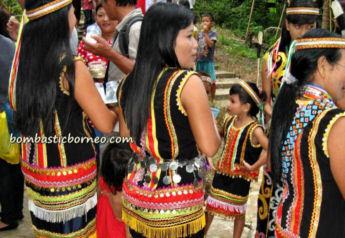 16-0-Copr_2013_Bombastic_Borneot.jpg