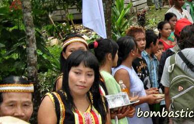 20-0-Copr_2013_Bombastic_Borneo.jpg