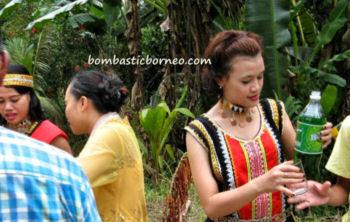 31-0-Copr_2013_Bombastic_Borneot.jpg