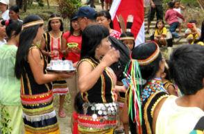 33-0-Copr_2013_Bombastic_Borneot.jpg