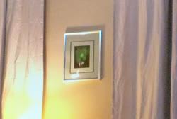 Green_painting-1t.jpg